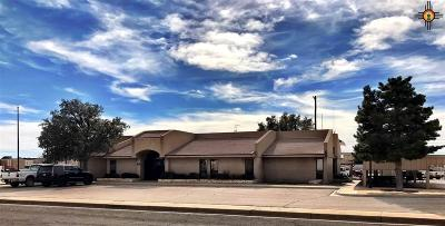 Hobbs NM Commercial For Sale: $575,000