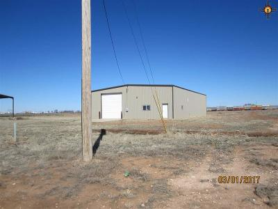 Curry County Commercial For Sale: 100 Pioneer