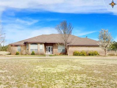 Portales Single Family Home For Sale: 2003 S Ave H