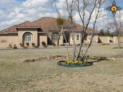 Clovis Single Family Home For Sale: 948 Curran Dr
