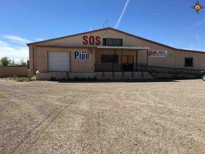 Portales Commercial For Sale: 113 N Avenue I