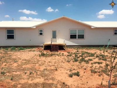 Portales Single Family Home For Sale: 1626 C S Roosevelt Rd 3