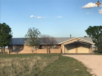 Portales Single Family Home For Sale: 355 S Roosevelt Road Z