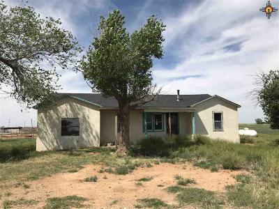 Portales Single Family Home For Sale: 1662 S Roosevelt Rd 3