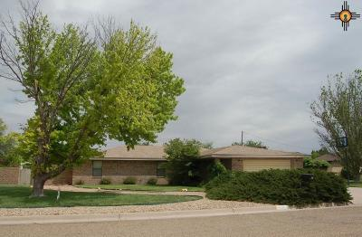Portales Single Family Home For Sale: 409 E 17th Lane