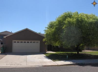 Hobbs NM Single Family Home For Sale: $196,475