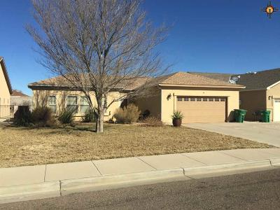 Hobbs NM Single Family Home For Sale: $221,900