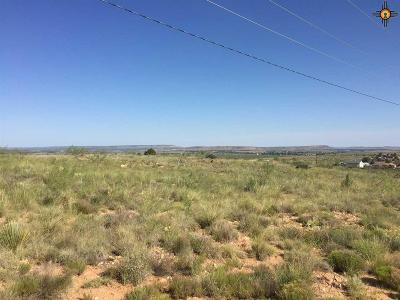 Tucumcari Residential Lots & Land For Sale: 3001 S 9th St