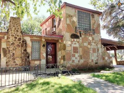 Portales Single Family Home For Sale: 1107 S Main Ave