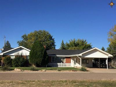 Portales Single Family Home For Sale: 918 W 15th Street