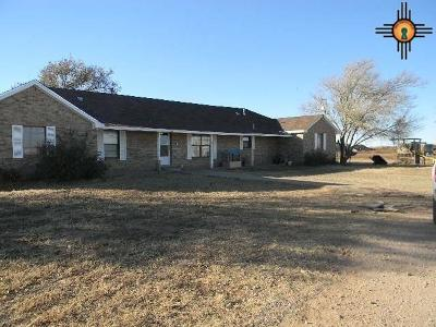 Portales Single Family Home For Sale: 440 S Rr T