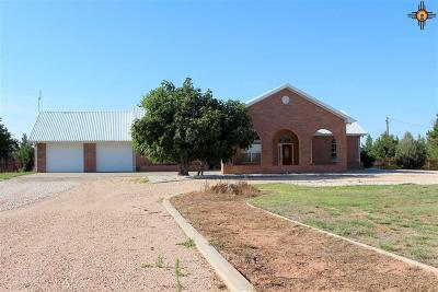 Portales Single Family Home For Sale: 1502 S Roosevelt Road 4
