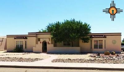 Deming Single Family Home For Sale: 3009 S Driver Rd