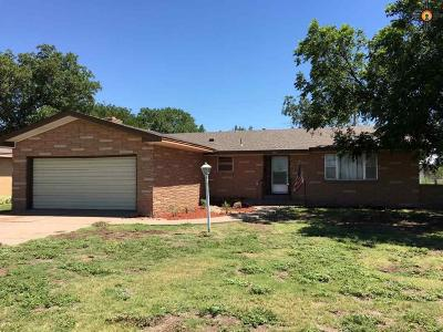 Portales Single Family Home For Sale: 813 W 18th Street