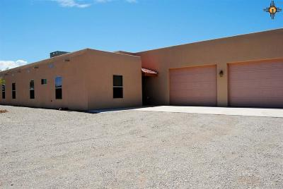 Sierra County Single Family Home For Sale: 18 Paint Trail