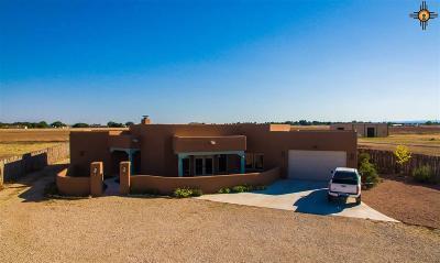 Carlsbad Single Family Home For Sale: 601 Walker Farm