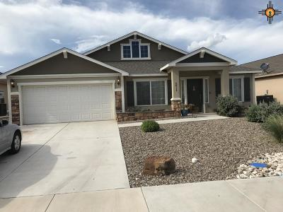 Hobbs NM Single Family Home For Sale: $276,000