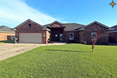 Single Family Home For Sale: 221 Almond Tree Lane