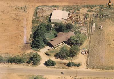 Portales Single Family Home For Sale: 369 S Rr P