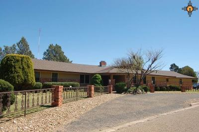 Portales Single Family Home For Sale: 2115 S Avenue G