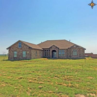Hobbs Single Family Home For Sale: 3315 W Hightower