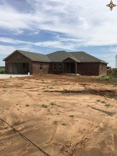 Portales Single Family Home For Sale: 107 Crest Pointe Dr