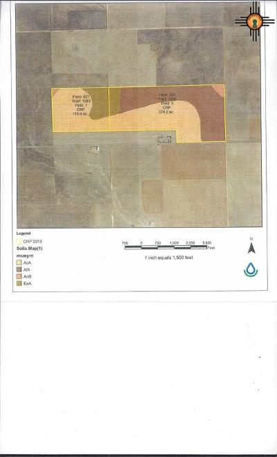 Melrose NM Farm & Ranch For Sale: $360,000