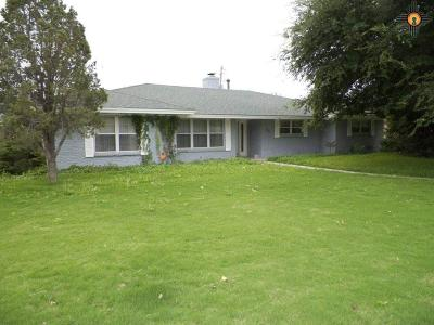 Hobbs Single Family Home For Sale: 601 W Silver