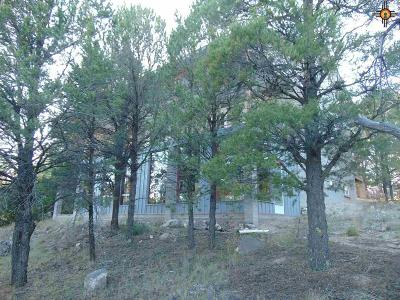 Catron County Single Family Home For Sale: 60 Largo Loop