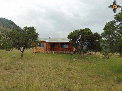 Catron County Single Family Home For Sale: 203 Northern Trail