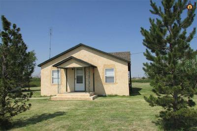 Portales Single Family Home For Sale: 2032 S Roosevelt Road 6