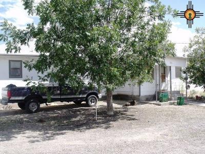 Sierra County Single Family Home For Sale: 417 Charlie's Lane