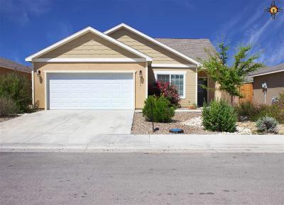 Hobbs Single Family Home For Sale: 5024 W Dark Horse Rd