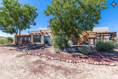 Sierra County Single Family Home For Sale: 87 Alamosa Village Rd
