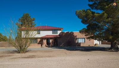 Deming Single Family Home For Sale: 1035 SE Dona Ana Rd