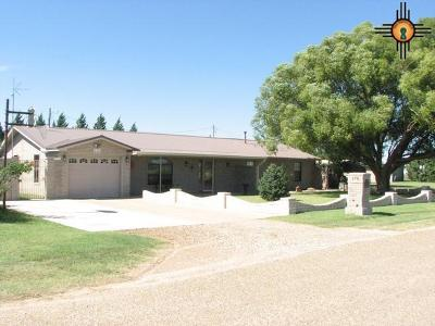 Portales Single Family Home For Sale: 378 S Roosevelt Rd R 1/2