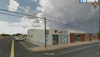 Hobbs NM Commercial For Sale: $295,000