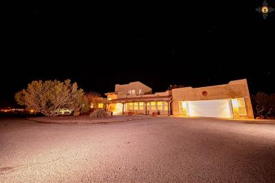 Gallup Single Family Home For Sale: 2155 Cipriano