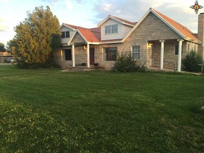 Lovington Single Family Home For Sale: 207 W Ave. B