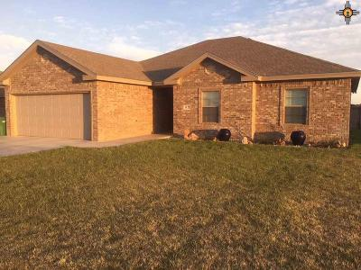 Hobbs NM Single Family Home For Sale: $259,000