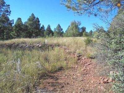 Las Vegas Residential Lots & Land For Sale: 5.55 Acres On Roadrunner Rd, Ojitos Frios Ranches