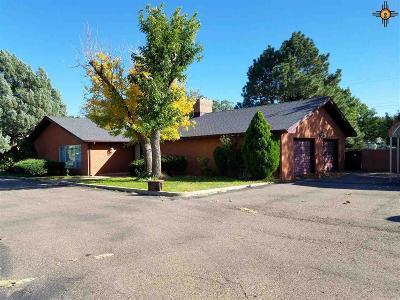 Clovis Single Family Home For Sale: 1905 E 21st Street