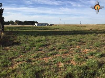 Hobbs Residential Lots & Land For Sale: Lot 3 Sagebrush Rd