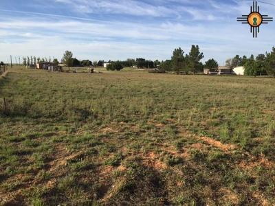 Hobbs Residential Lots & Land For Sale: Lot 5 Shinnery Lane
