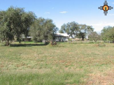 Portales Single Family Home For Sale: 7678 Nm 206