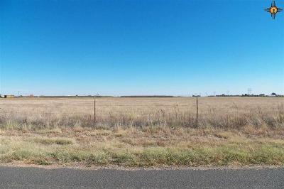 Clovis NM Residential Lots & Land For Sale: $650,000