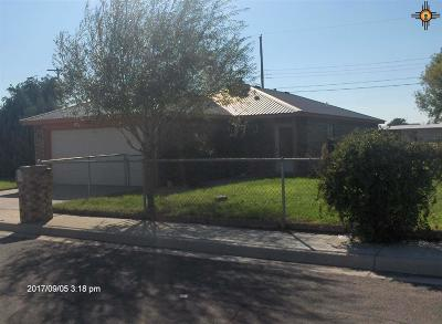 Hobbs NM Single Family Home For Sale: $179,000
