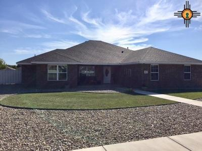 Clovis NM Single Family Home For Sale: $227,000
