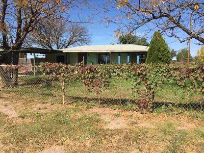Portales Single Family Home For Sale: 1116 W Spruce