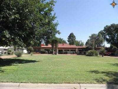 Carlsbad Single Family Home For Sale: 904 W Riverside Drive